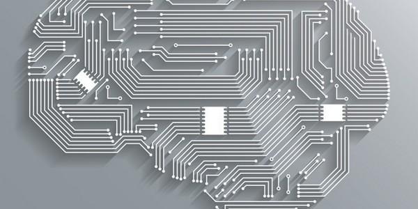 بكالوريوس تكنولوجيا معلومات الأعمال  (مرتبة الشرف)