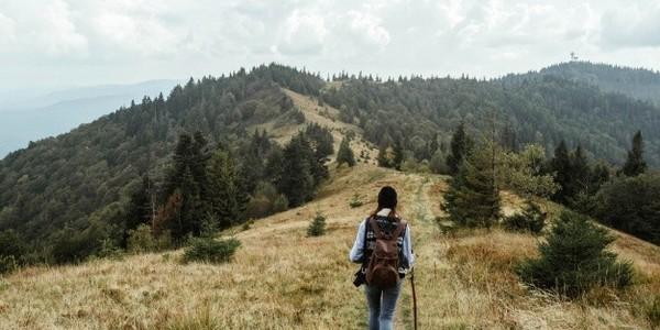 دبلوم في إدارة السفر والسياحة