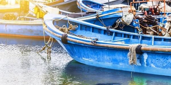 بكالوريوس في العلوم البحرية (مصايد الأسماك وتركيزات ما بعد الحصاد التكنولوجيا)