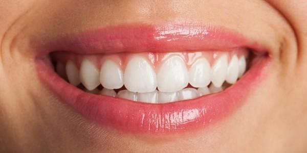 برامج طب الأسنان (مرحلة تأسيسية)