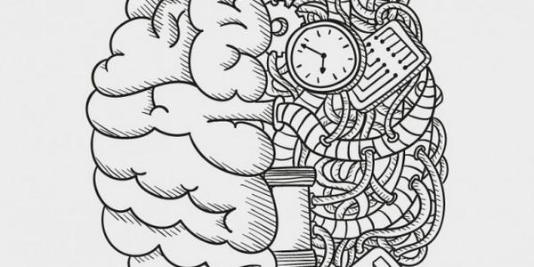 دكتوراه في علم النفس - علم النفس (من خلال البحث)